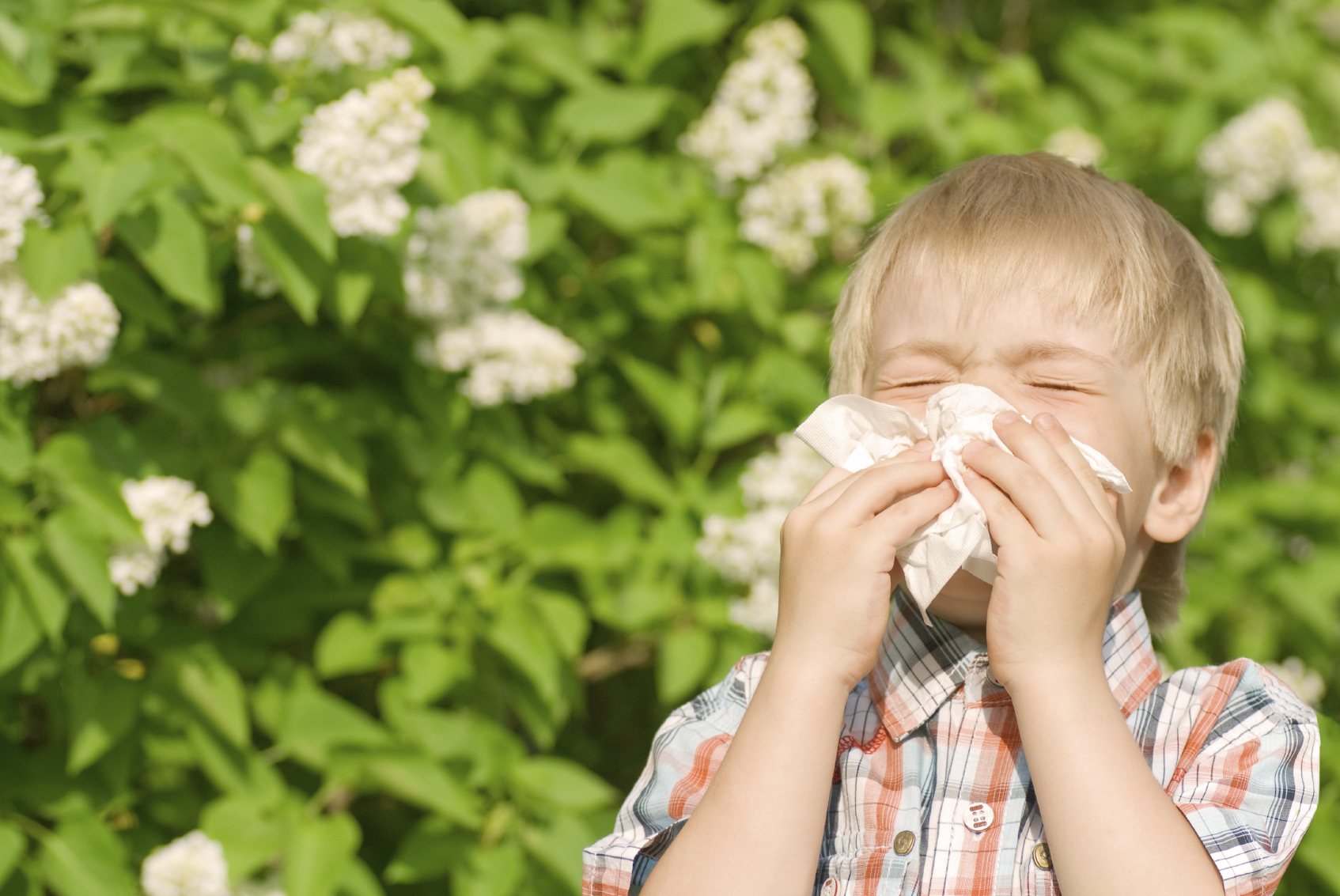 Natural Remedies For Children S Allergies